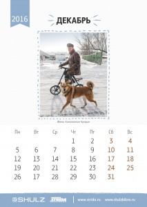 calendar_2016a13